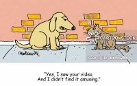 "Cartoon of a dog and cat meeting along a sidewalk. The dog is telling the cat, ""Yes, I saw your video. And I didn't find it amusing."""