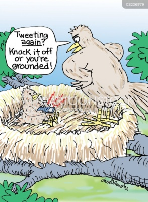 """A baby bird is sitting in its nest with a cell phone. He's been caught by his mother, """"Tweeting again."""""""