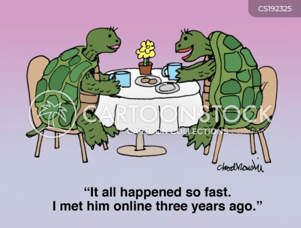 """Two turtles are sitting in a restaurant having coffee. One is talking about her relationship. She explains, """"it happened so fast. I met him online three years ago."""""""