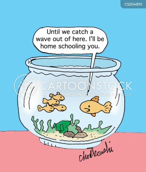 Until we catch a wave out of here. Living in a goldfish bowl, the father goldfish tells his children he will home-school them.