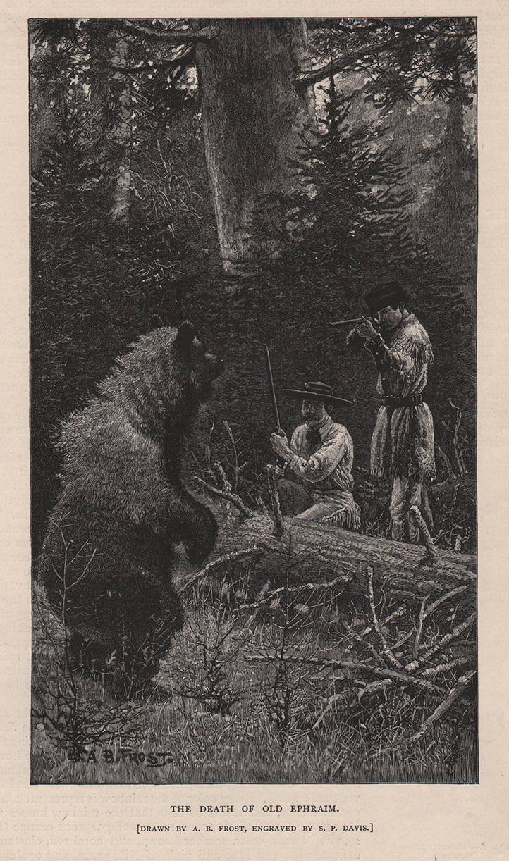 Bear hunting. Century Magazine 1885 Drawn by A.B. Frost.