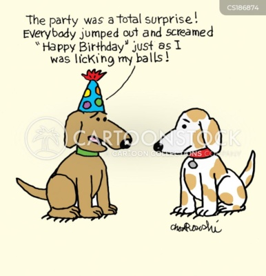 """The birthday dog is telling another dog that the party was a total surprise. Everyone jumped out yelling """"Happy Birthday"""" just as he was licking his balls."""
