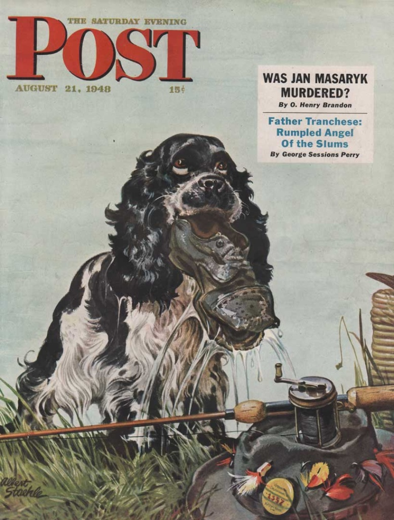 The Saturday Evening Post, August 21, 1948. Cover shows a cocker spaniel with a shoe in its mouth. Illustrated by Albert Staehle.