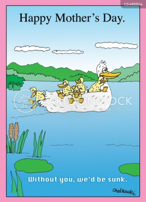A mellow mother duck is traveling in a lake. Her ducklings are on board riding safely on their mother's back.