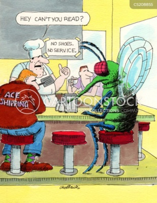 """A man-size fly is sitting at diner counter waiting to place order. The chef wants to know if he can read. There is a sign that says """"No shoes, no service."""""""
