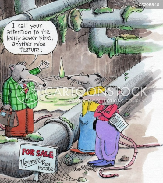 A rat agent from Vermin Real Estate is showing a space next to a leaky sewer pipe to a pair of rat clients. The agent is pointing out these flaws as nice features.