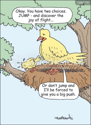 """Cartoon of A young bird at the nest's edge. It's hesitating to take flight. It's mother says there's two choices, jump and discover the joy of flight or be pushed"""""""