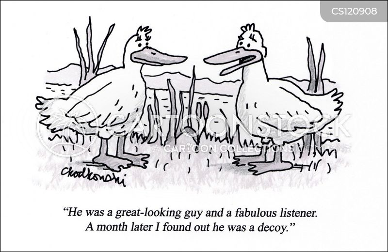 Two female ducks talk bad dating experiences. One remembers a great-looking guy who was a fabulous listener. Turned out he was a decoy.