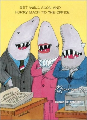 Get Well Soon and Hurry Back to the Office. . . Before Sharks Eat Your Job